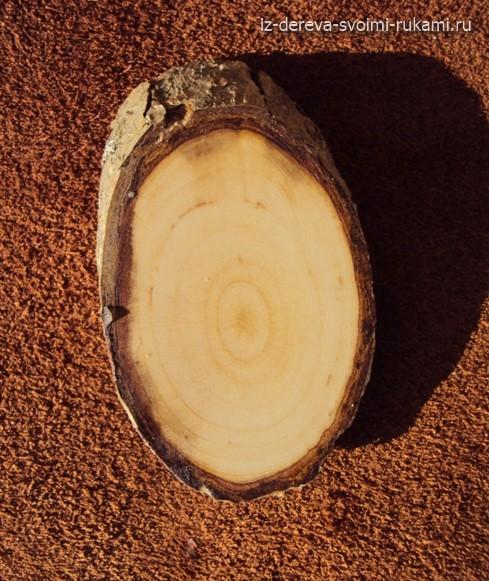 Боярышник.Структура дерева