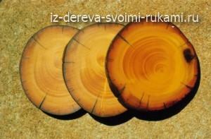 торцовый срез дерева