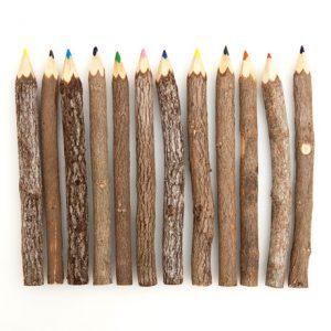 карандаши из веток дерева своими руками