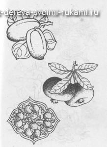 выжигание по дереву, эскизы: цветы, злаки, овощи, фрукты, ягоды