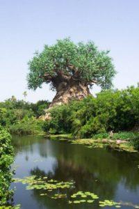 необычное дерево жизни, парк королевства животных, фото