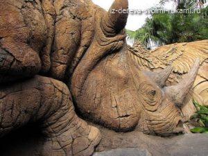 дерево жизни, парк королевства животных, фото