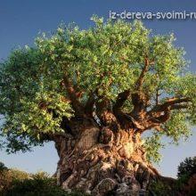 Дерево жизни в диснеевском парке Королевства Животных