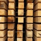 timber 3 - Из дерева своими руками. Мастер-классы по дереву - С какой древесиной лучше работать? Мягкая и твёрдая древесина