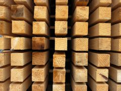 С какой древесиной лучше работать? Мягкая и твёрдая древесина