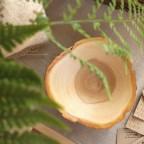 7QBYCLW89zE - Из дерева своими руками. Мастер-классы по дереву - Удивительные тарелочки из срезов дерева, 13 фото