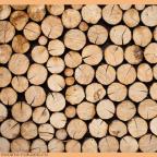 3BFC5387 5FB8 4B8A B3D1 A43F15602C66 - Из дерева своими руками! Интересные деревянные поделки, мебель, мастер-классы по дереву - Старинные рецепты обработки древесины. Рецепты дешёвых и прочных красок для деревянных поверхностей