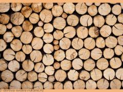 Старинные рецепты обработки древесины. Рецепты дешёвых и прочных красок для деревянных поверхностей