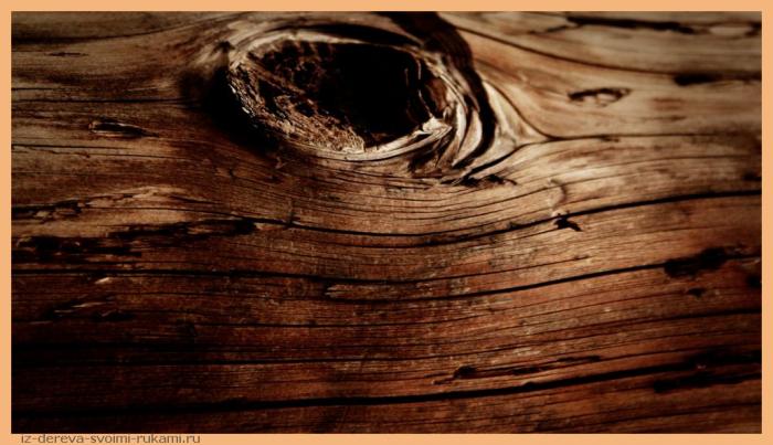priroda rasteni makro greciya - Из дерева своими руками. Мастер-классы по дереву - Старинные рецепты обработки древесины. Рецепты дешёвых и прочных красок для деревянных поверхностей