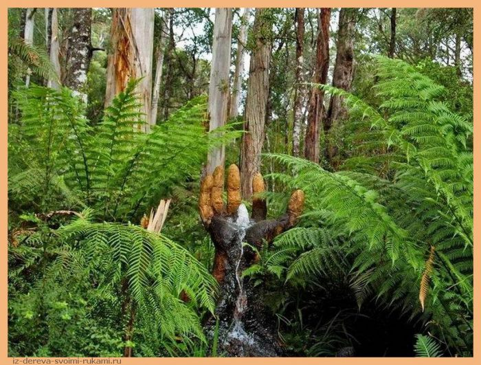 5a3fee1d8da348c7a3133afe093085e2 - Из дерева своими руками. Мастер-классы по дереву - Сад скульптур в Мельбурне, Австралия (21 фото+видео). Мастер Бруно Торфс