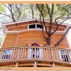 vw61IflK5c - Из дерева своими руками. Мастер-классы по дереву - Дедушка построил 3-этажный дом на дереве для своих внуков, 5 фото